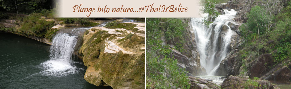 Plunge into the nature...that is Belize